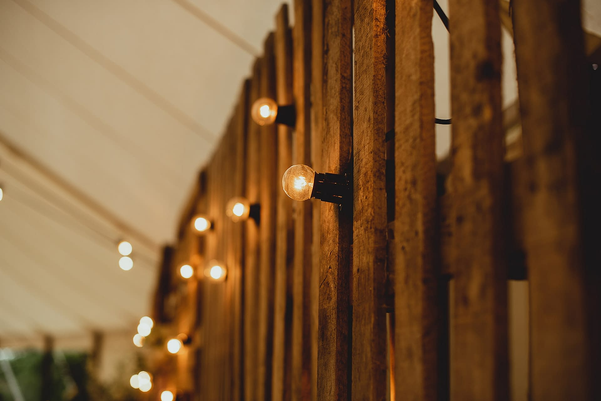 Festoon lights dressing a bespoke pallet wedding backdrop
